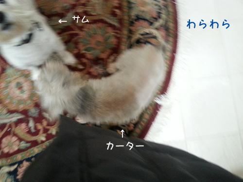 20131210_115602.jpg