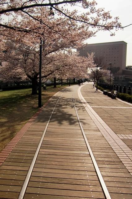 汽車道とナビオス横浜