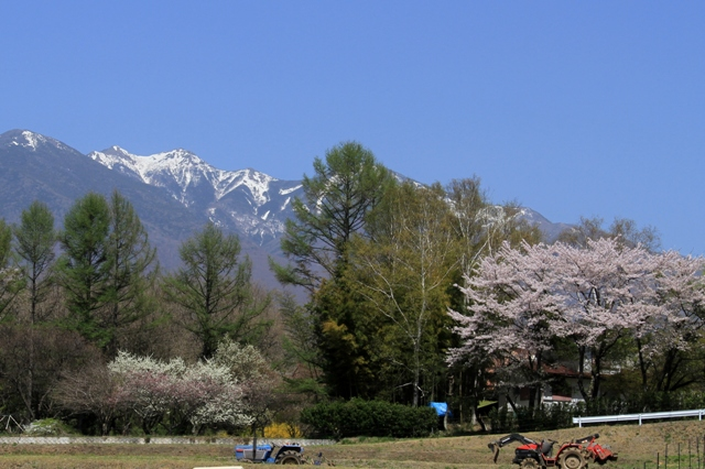 残雪の八ヶ岳と春の田おこし