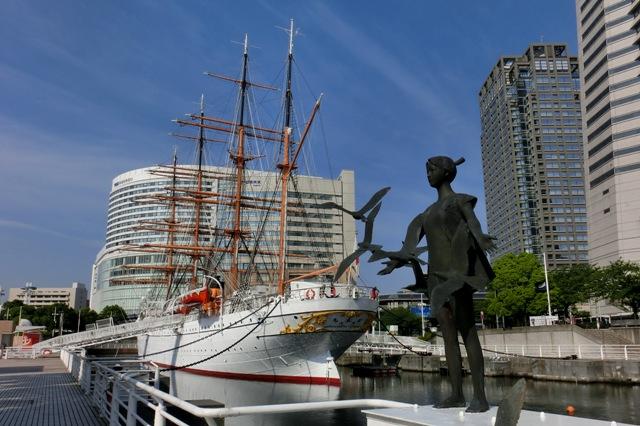 帆船日本丸と海鳥達の風