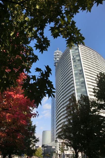 横浜美術館前から見た横浜メディアタワー