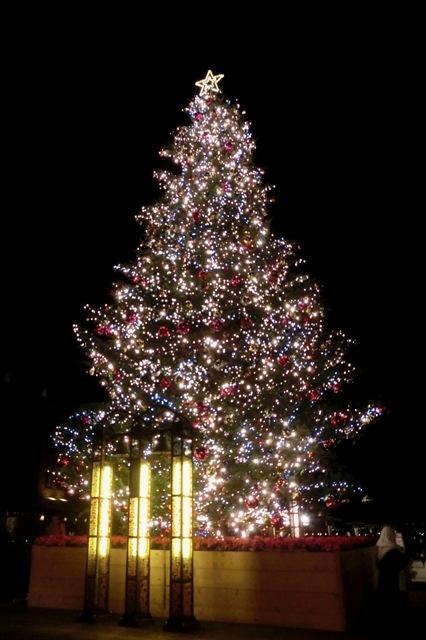クリスマスツリーと幸せの鐘