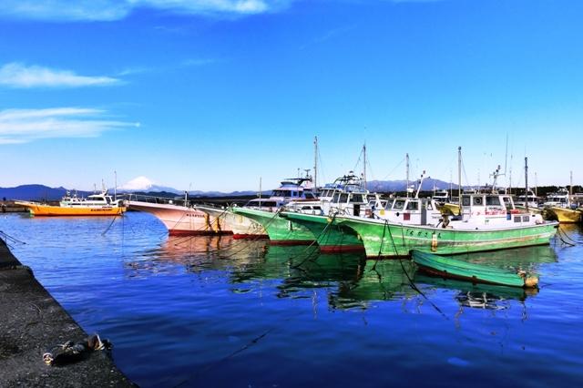 茅ヶ崎漁港