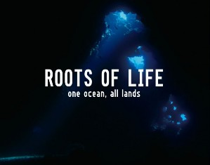 rootsoflife_cover-750x589_20121222113422_20121229135042.jpg