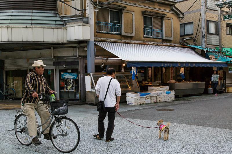 2012-11-25_old-town-4.jpg