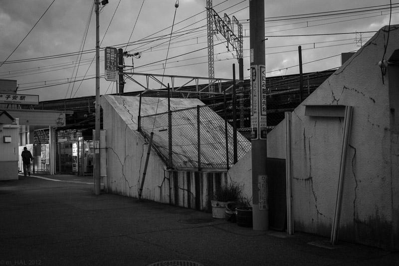 2012-12-10_night_vision-1.jpg