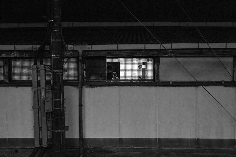 2012-12-10_night_vision-3.jpg