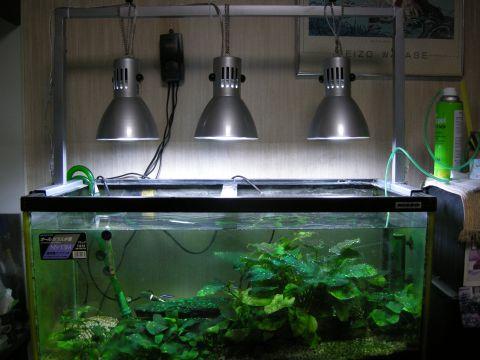 水草水槽の照明