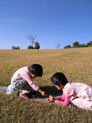 いつもの公園(2012年10月) その2