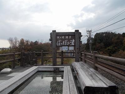 2013伊豆冬 (7)