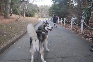01.02散歩
