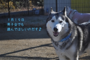 01.05愛ハス8