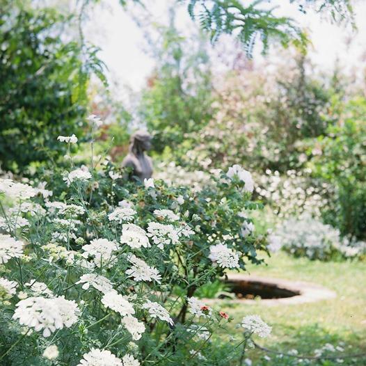 shio_花園a