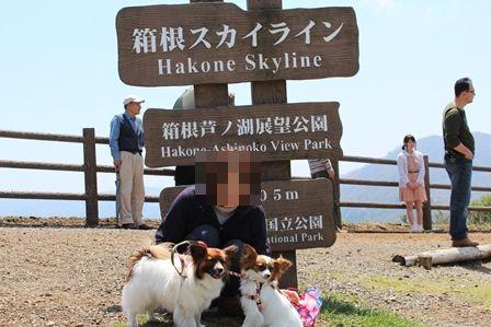 芦ノ湖スカイライン1