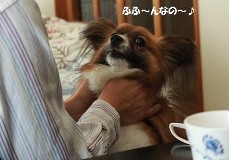 風太+たけちゃん