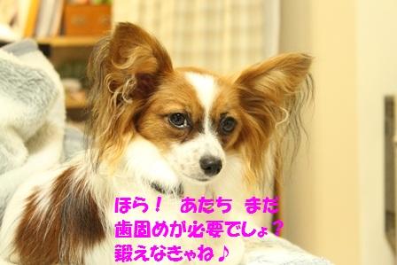 IMG_5972.jpg