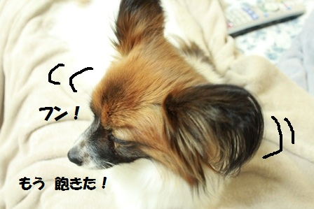 IMG_7053.jpg