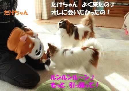 IMG_7765.jpg