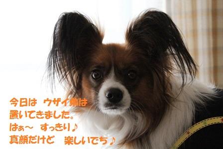 IMG_7813.jpg