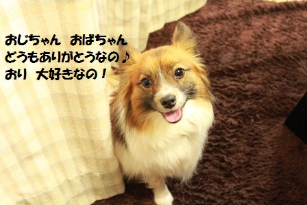 IMG_8114.jpg