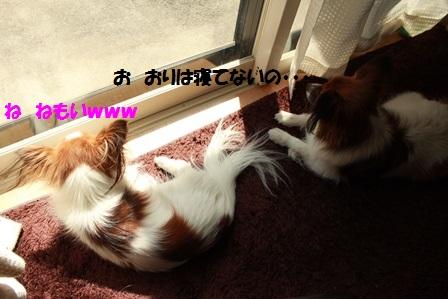 IMG_8406.jpg