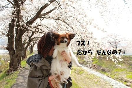IMG_8882.jpg