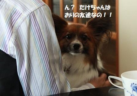 IMG_8932.jpg