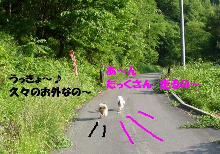 P1200842_20120617182901.jpg