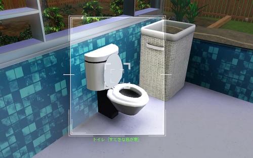 camera_A toilet