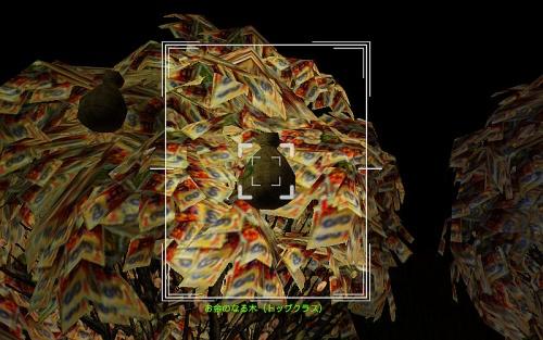 camera_A Money Tree