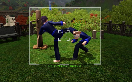 camera-Sims Sparring