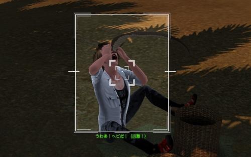 camera-Oh No, Snake!