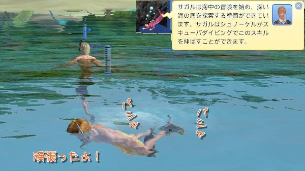 IP3-22.jpg