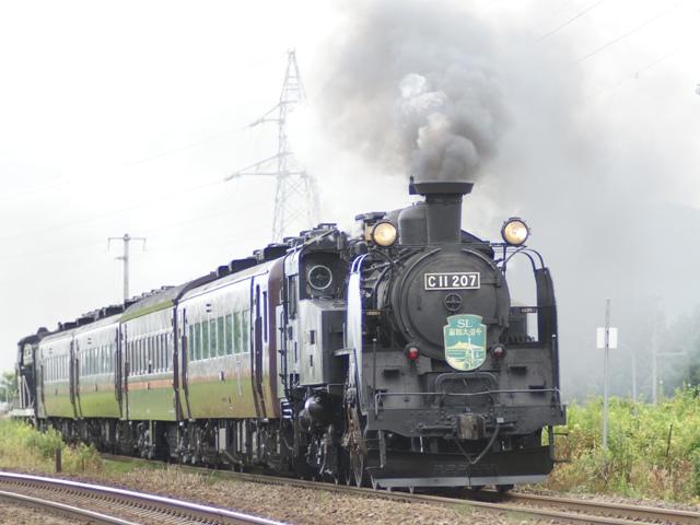 DSC01469 (2)