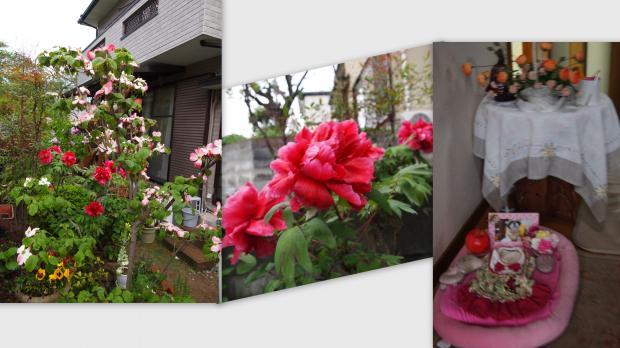 2012-04-213_convert_20120422221124.jpg