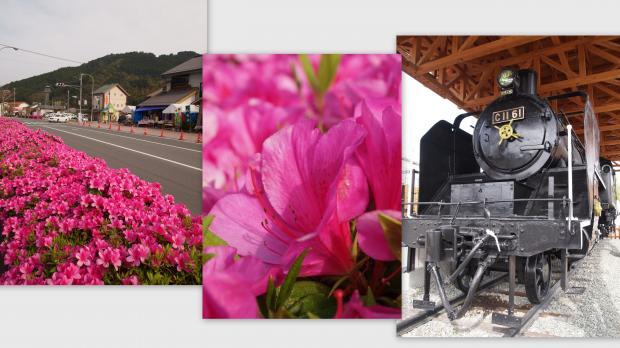 2012-04-24_convert_20120430142338.jpg