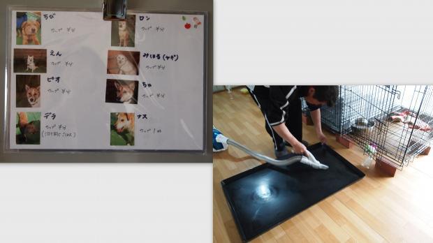 2012-05-013_convert_20120521023849.jpg