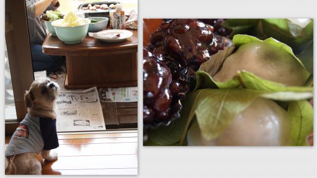 2012-05-065_convert_20120507015629.jpg