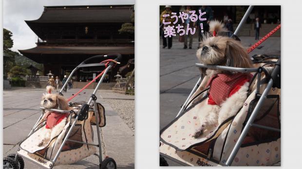 2012-05-117_convert_20120520021049.jpg