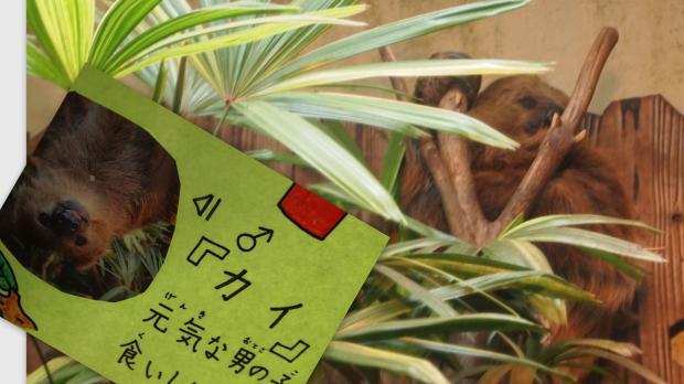 2012-05-1414_convert_20120603231742.jpg