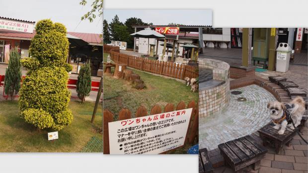 2012-05-1421_convert_20120603232135.jpg