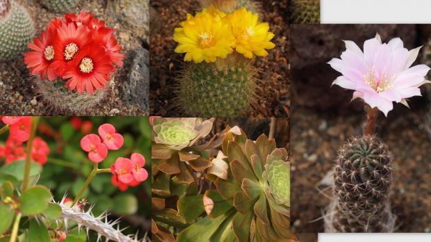 2012-05-147_convert_20120603231439.jpg