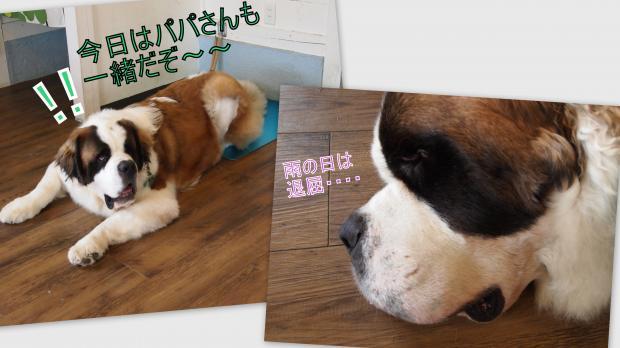 2012-06-016_convert_20120625031540.jpg