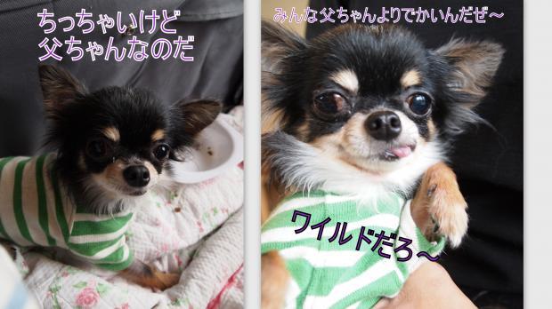 2012-06-043_convert_20120606223807.jpg