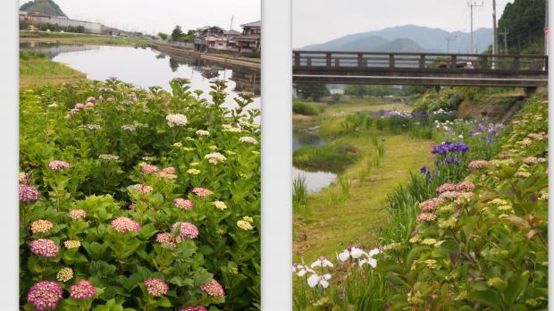 2012-06-045_convert_20120606223846.jpg