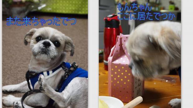2012-06-202_convert_20120622005415.jpg