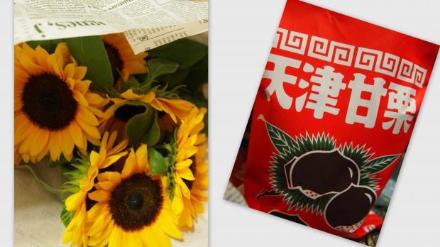 2012-06-23_convert_20120705024404.jpg