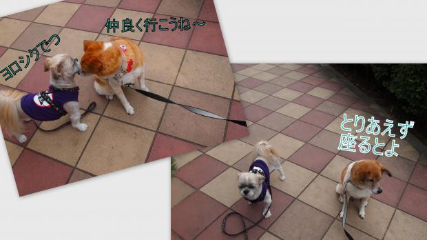 2012-06-283_convert_20120629025554.jpg