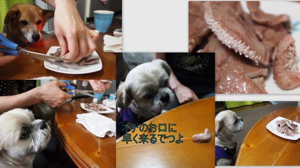 2012-06-286_convert_20120629025655.jpg