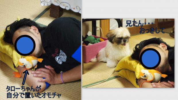 2012-07-081_convert_20120710001130.jpg